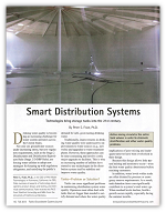Smart Distribution Systems